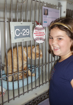 Supervisor Nelson's daughter Amanda visiting a cat.