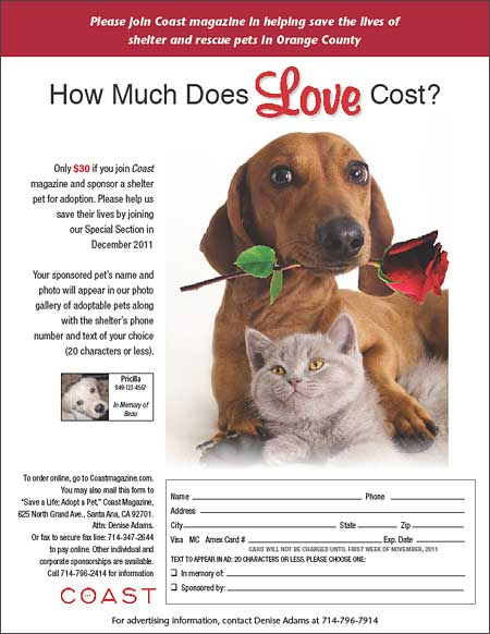 How Much does Love Cost